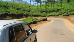 Wayanad Land of Paddy