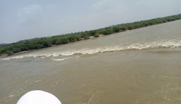 Water flowing through Luni River